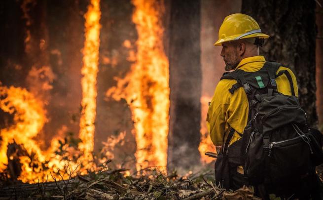 Feuerwehrmann_skeeze_picabay