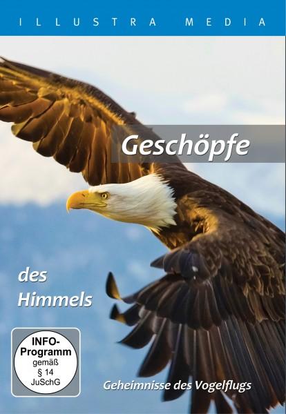Geschöpfe des Himmels (DVD)